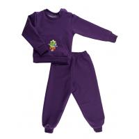 Спортивный костюм 0366/8 фиолетовый