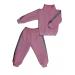 Спортивный костюм 0256/8 брусничный, лампасы