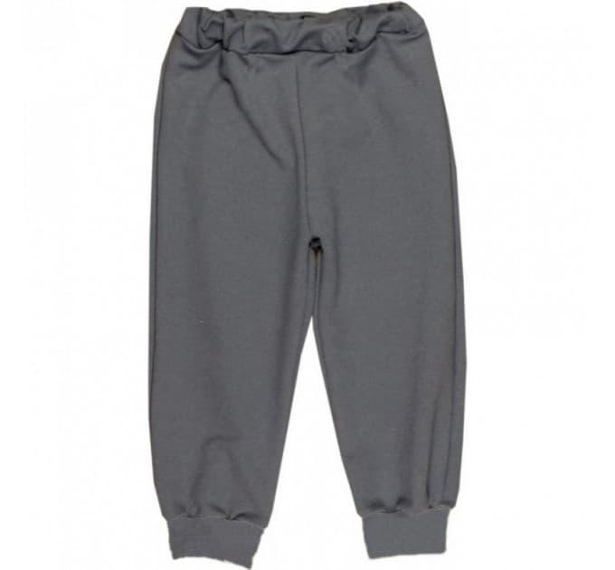 Спортивные штаны 381/40 (серые, начес)